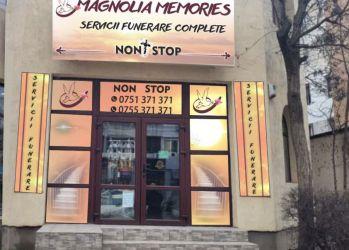 magnolia memories 1b