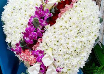 floraria gi na branesti 1